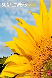 Download Sunflowers 2013 Square 12X12 Wall Calendar (Multilingual Edition) djvu